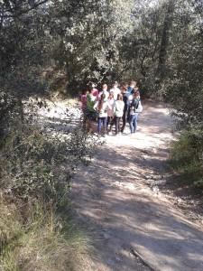 Al bosc fent una prova del multilingual day